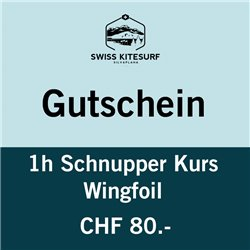 GG-WFSK  - wingfoil trial course 1 hour voucher